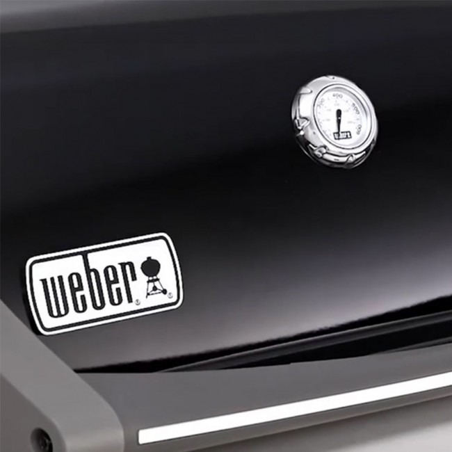 weber gasgrill spirit eo 210. Black Bedroom Furniture Sets. Home Design Ideas